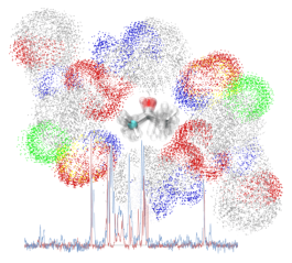 NMR-MD